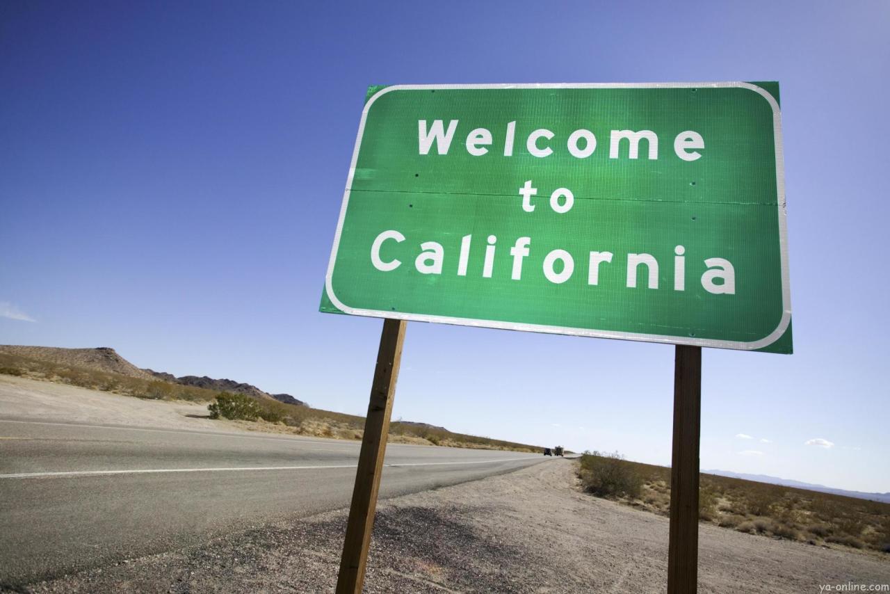 ВСША назвали дату референдума оразделении Калифорнии