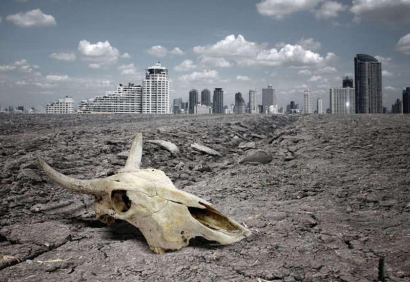 Доказана неизбежность глобальной катастрофы
