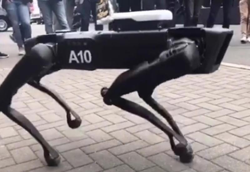 """Робот-пес Boston Dynamics впервые прогулялся по улицам Ганновера <span class=""""color_red"""">- ВИДЕО</span>"""