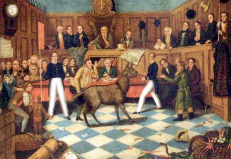 Каквсредневековой Европе судили животных
