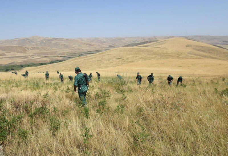 Новые подробности перестрелки на азербайджано-иранской границе