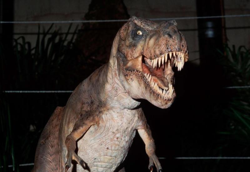 Названы самые исторически достоверные фильмы о динозаврах