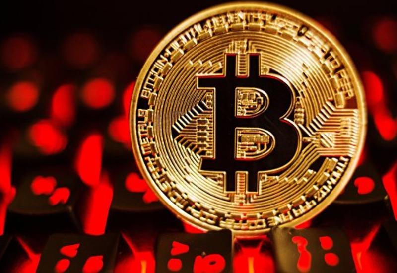 Ученые выяснили, как соцсети повышают цену биткоина