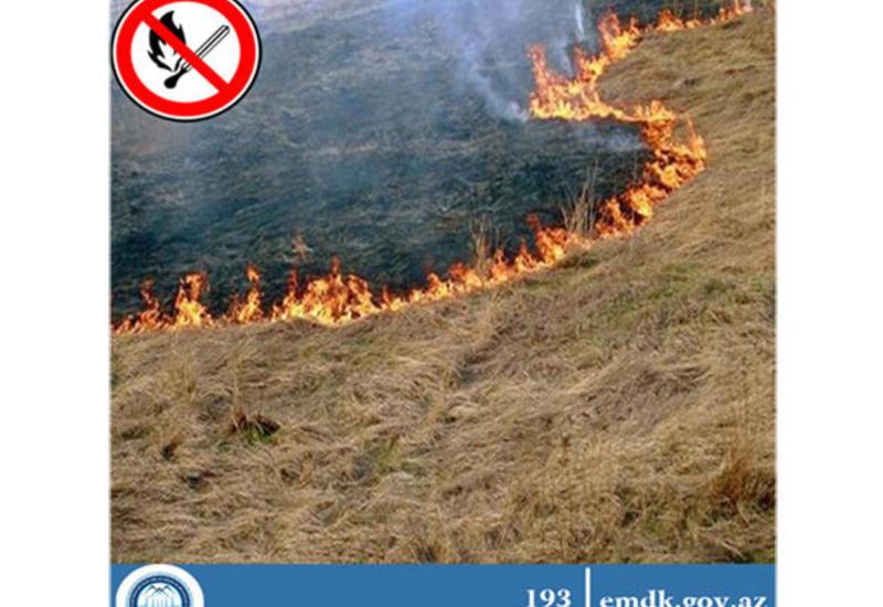 Госкомитет напомнил о строгом наказании за умышленный поджог посевных площадей