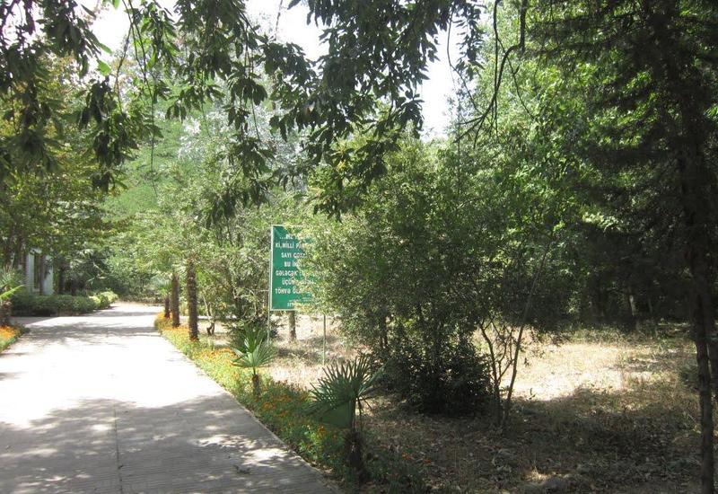 Национальные парки Азербайджана набирают популярность среди туристов