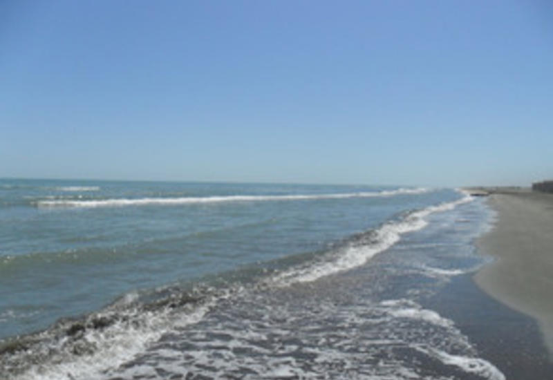 Названы центры отдыха, которые загрязняют берег Каспия