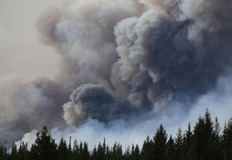 В Канаде ввели режим ЧС из-за пожаров