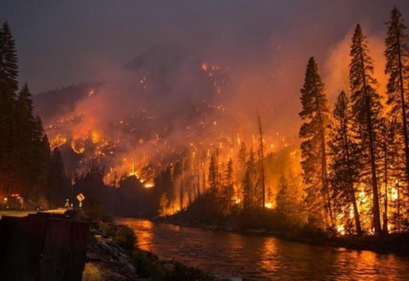 Франция отправила самолеты для тушения пожаров в Швеции