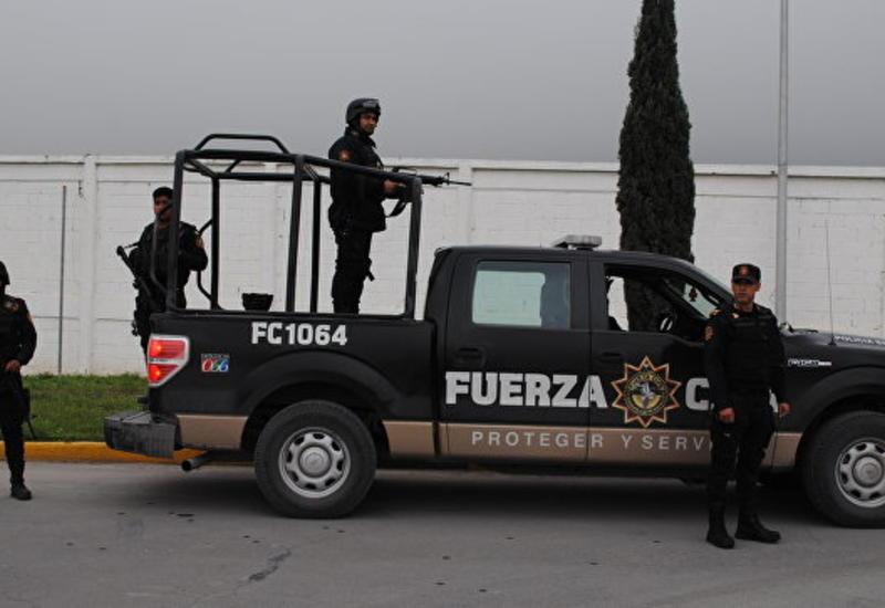 В Мексике задержаны члены могущественного наркокартеля