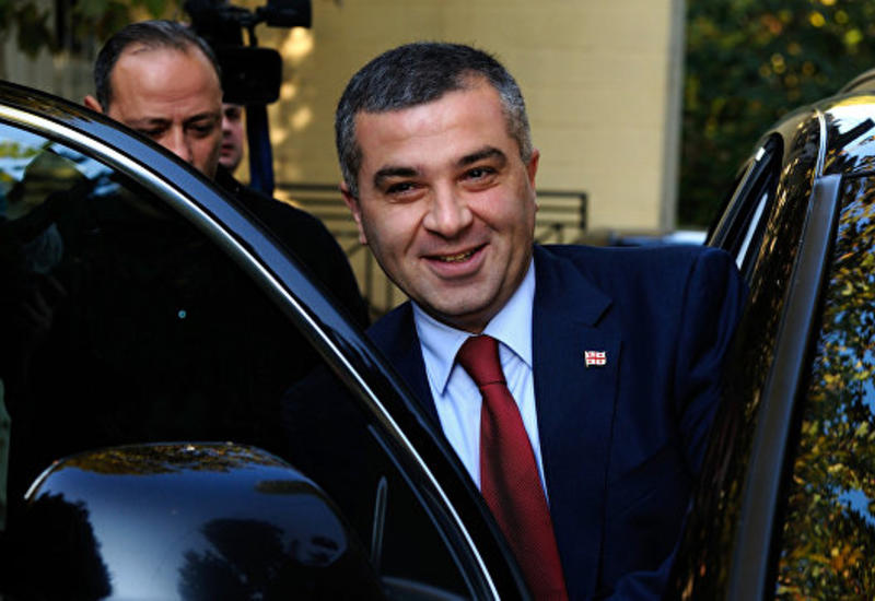 """Оппозиционная партия """"Европейская Грузия"""" выдвинула кандидата в президенты"""