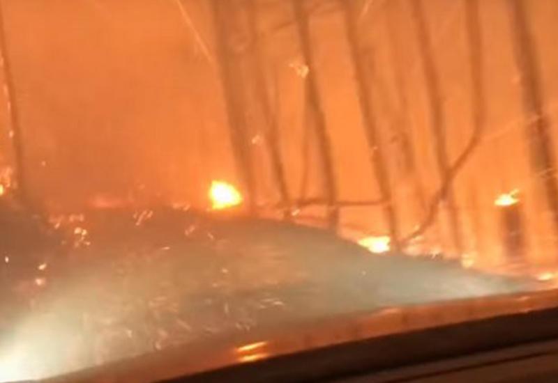 """Драма в США: Отец с сыном спасаются из горящего леса <span class=""""color_red"""">- ВИДЕО</span>"""