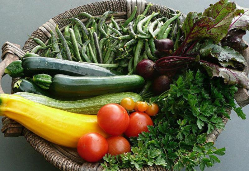 В финской армии введут обязательный вегетарианский день
