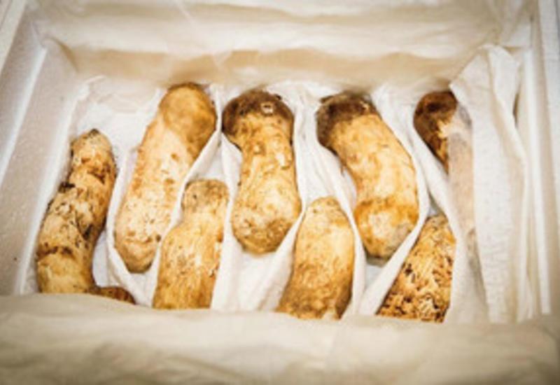 Ким Чен Ын подарил президенту Южной Кореи две тонны дорогих грибов
