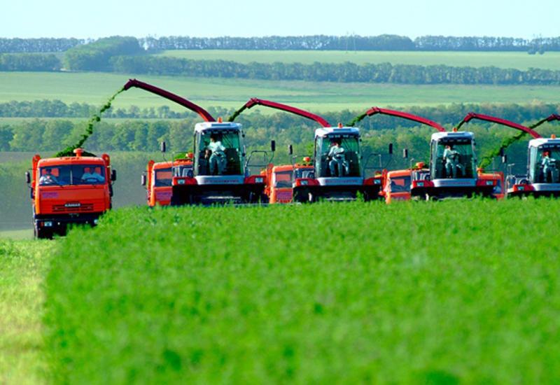 Россия - крупный партнер Азербайджана во всех областях сельского хозяйства