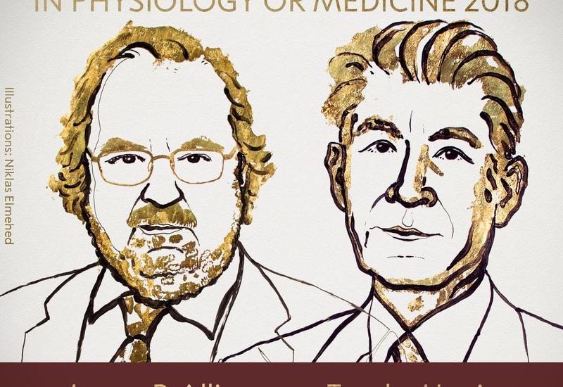 Нобелевская премия по медицине присуждена за открытия в терапии рака