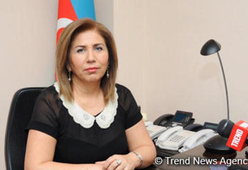Вице-спикер о возвращении азербайджанских детей из Ирака