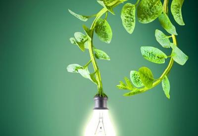 Ученые из Китая создали материал для генерации энергии на основе фотосинтеза