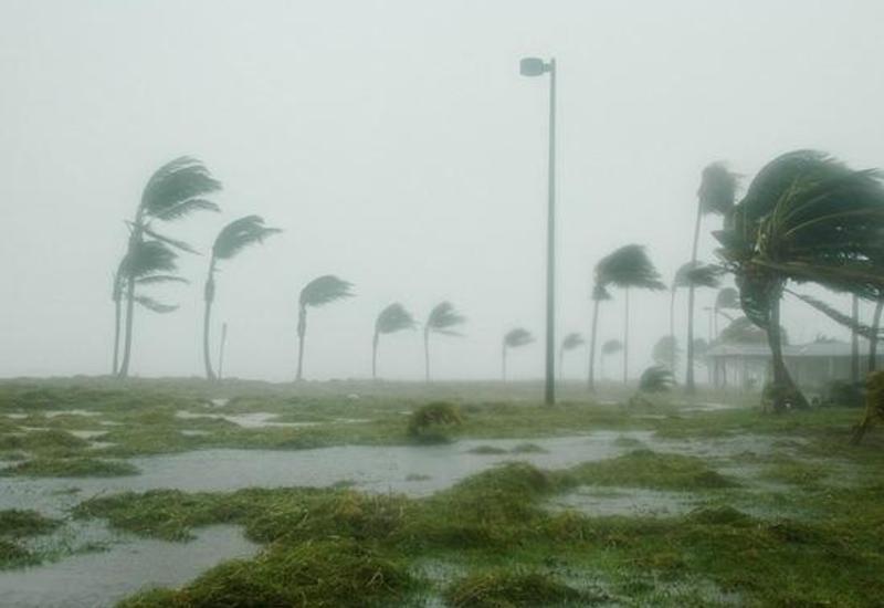 """ЕС помогает США в связи с ураганом """"Майкл"""" по запросу Вашингтона"""