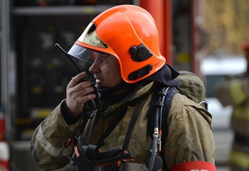 В России пожарные спасли из горящего здания семерых щенков