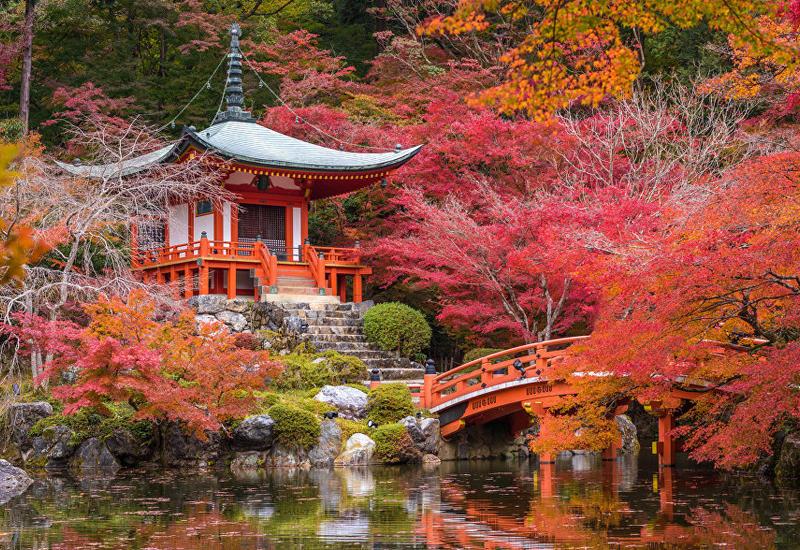 В еще одном японском городе введен туристический налог