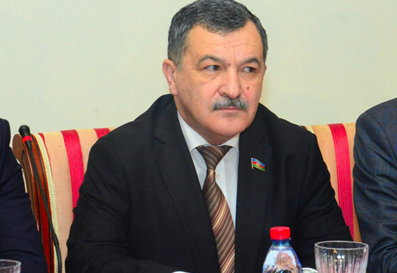 Айдын Мирзазаде: Показатель динамичности бизнеса в Азербайджане по версии ВЭФ можно считать большим успехом