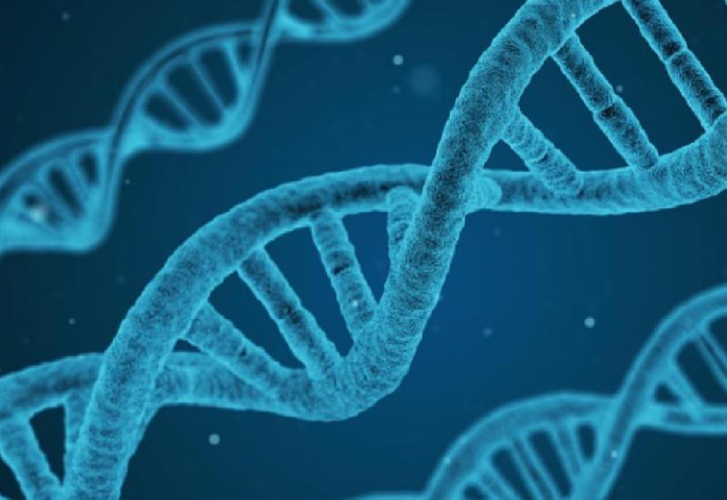 Российские генетики создали неуязвимые для ВИЧ эмбрионы