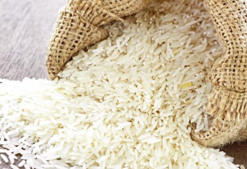 В Азербайджане начали выращивать новые сорта риса