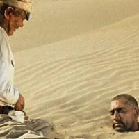 Жестокая загадка про головы в песке