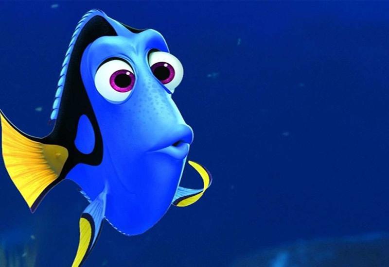 Ктоназвал нашу планету Землей,зачем рыбам горохи другие интересные факты