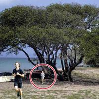 """Если вы увидели это дерево, убегайте быстрее и зовите на помощь <span class=""""color_red"""">- ВИДЕО</span>"""