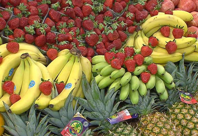 Бельгия и Нидерланды в обход санкций ввезли в РФ фрукты на 240 млн евро