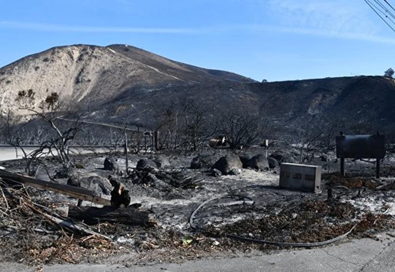 Названа сумма ущерба от пожаров в Калифорнии