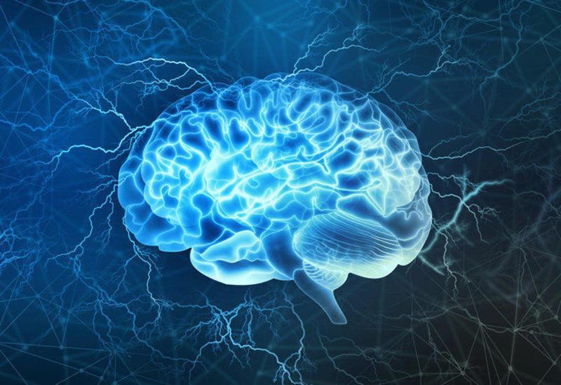 Ученые выяснили, почему травмы мозга приводят к когнитивным расстройствам