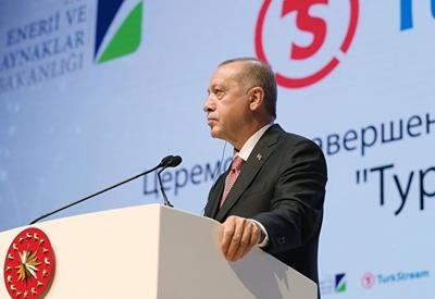 """Эрдоган назвал """"Турецкий поток"""" стратегическим энергетическим проектом"""