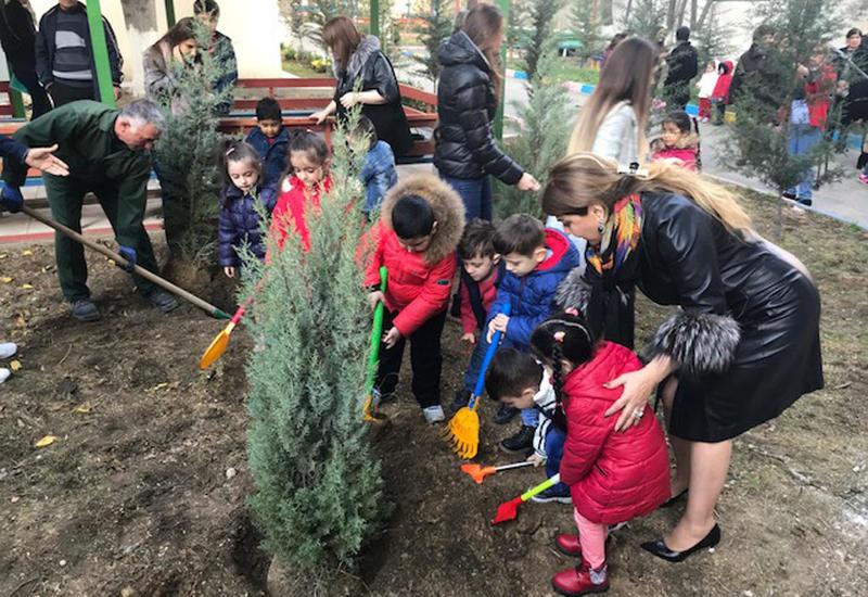 """Дети и школьники посадили деревья в Баку <span class=""""color_red"""">- ФОТО</span>"""