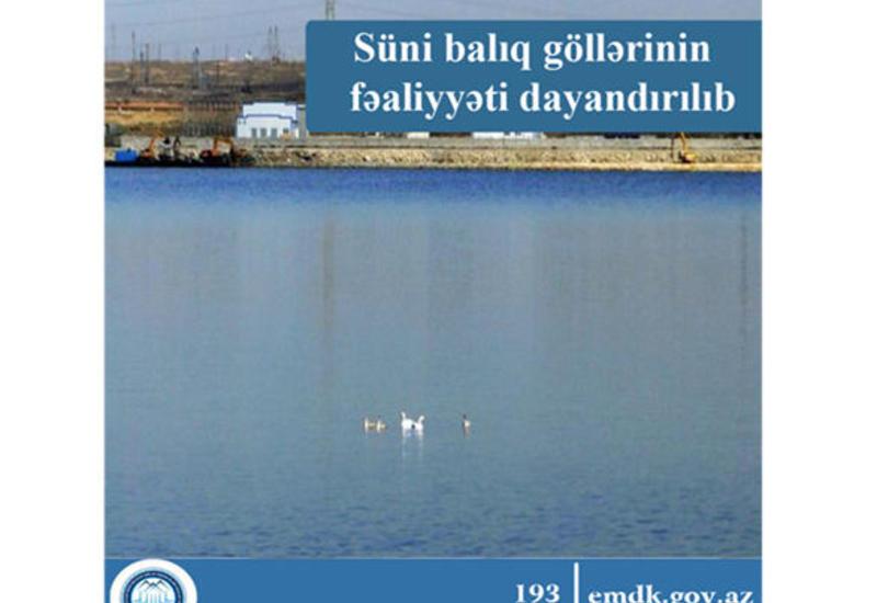В Азербайджане закрыли более 120 незаконных рыбных хозяйств