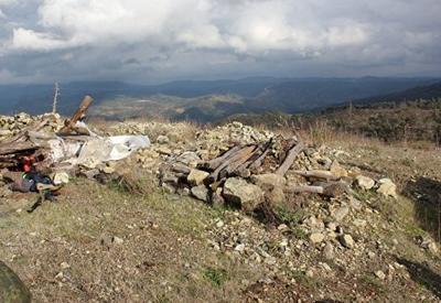 В сирийской деревне из-за ударов коалиции погибли 30 мирных жителей