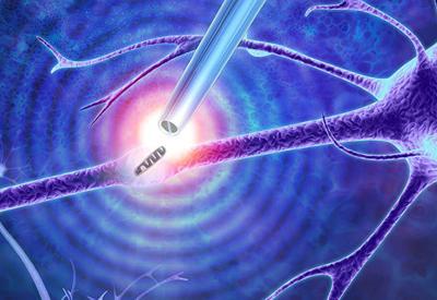 """Ученые создали """"щипцы"""", способные извлечь нить ДНК из живой клетки"""