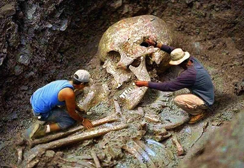 Доказательство того, что гиганты существовали