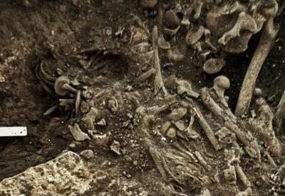 Ученые: древних европейцев сгубила чума