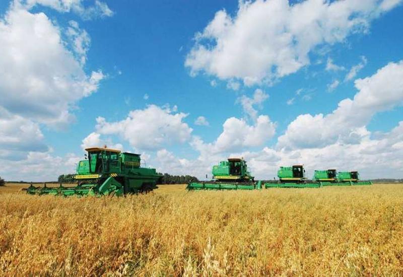 Азербайджан и Турция могут создать совместные агропредприятия