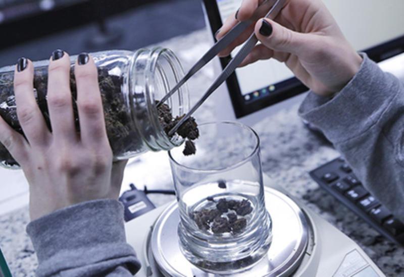 В Новой Зеландии легализуют медицинскую марихуану