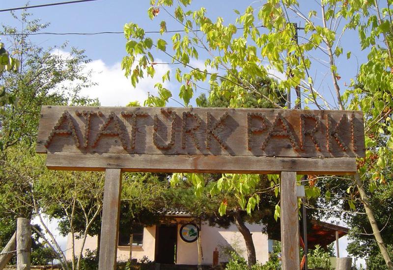 Исполнительная власть Баку о ситуации в парке Ататюрка