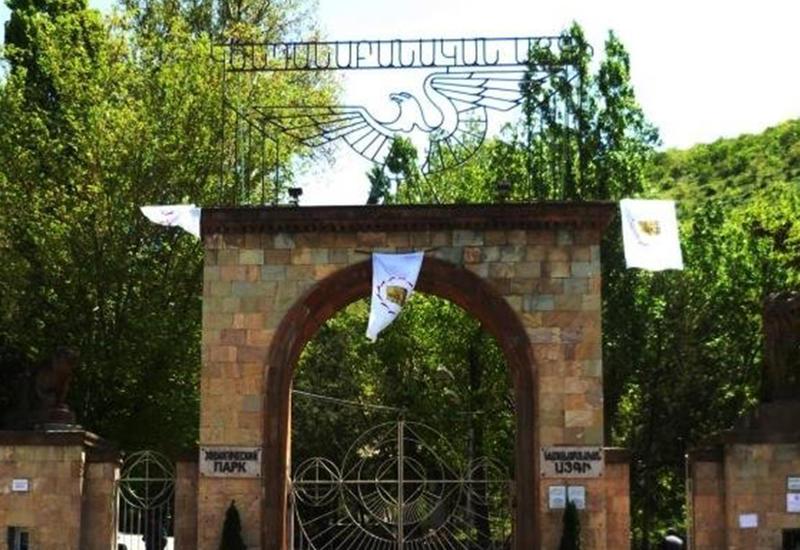 После революции даже ереванский зоопарк стал вымирать