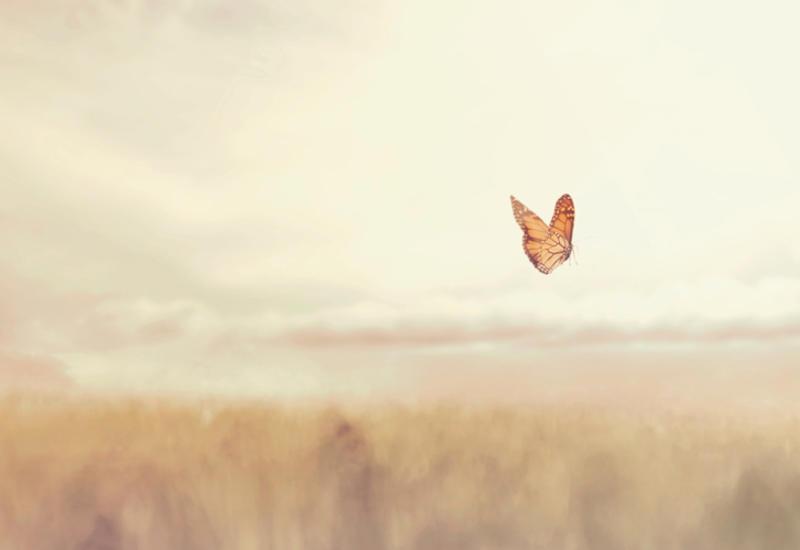 Медитация поможет понять, что люди чувствуют после смерти