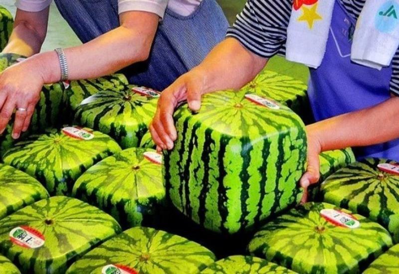 """10 дорогих продуктов, которые вы можете найти только в Японии <span class=""""color_red"""">- ВИДЕО</span>"""