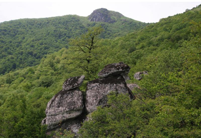 Сколько туристов посетили национальные парки Азербайджана в 2018 году?