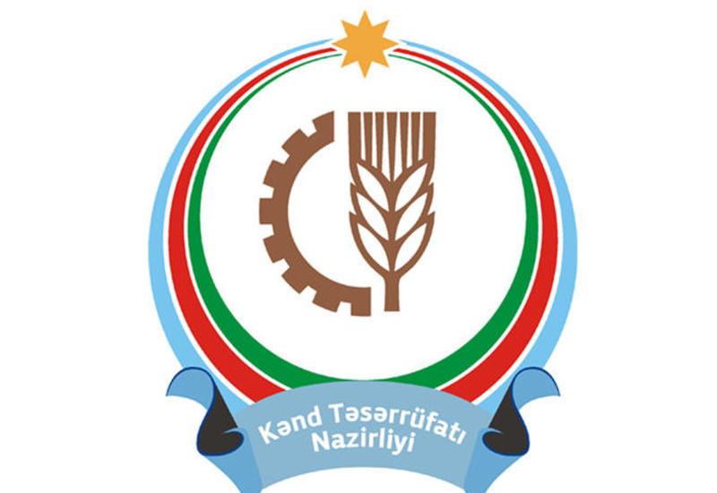Министерство о новом аграрном агентстве