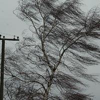 В Азербайджане ожидается крайне опасное метеорологическое явление