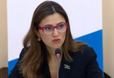 Азербайджанский депутат в ПАСЕ предупредила Армению